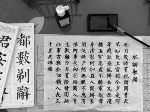 中国語オンラインレッスンをおすすめする人